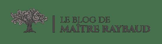 Avocat Arles, Maître Cédrine RAYBAUD